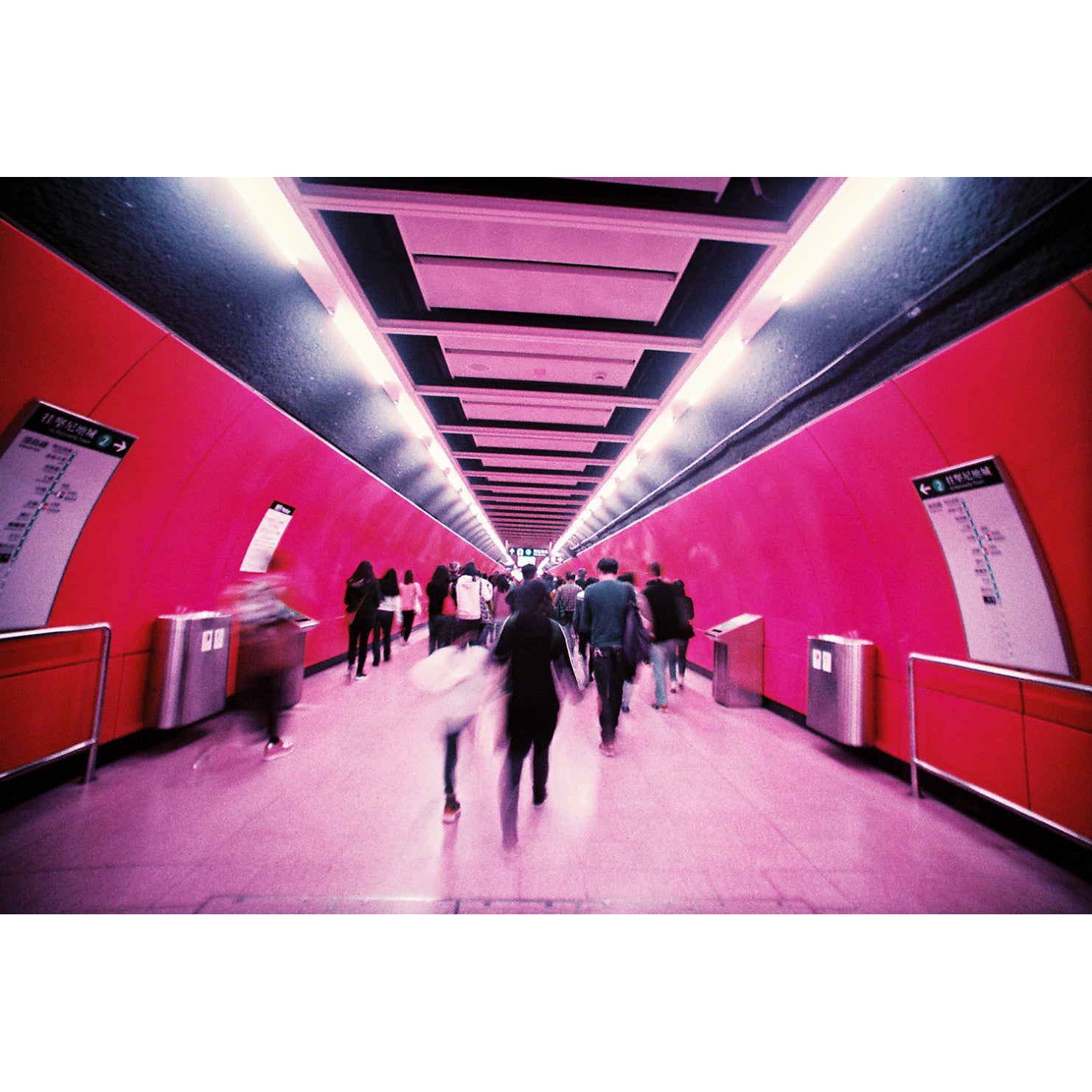 Lomography Lomochrome Purple 35mm ISO 100-400