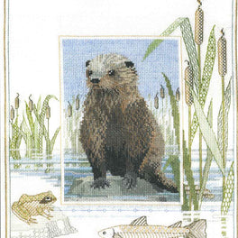 Wildlife - Otter