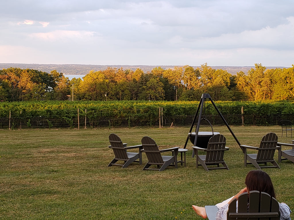 Buttonwood Winery in the Finger Lakes