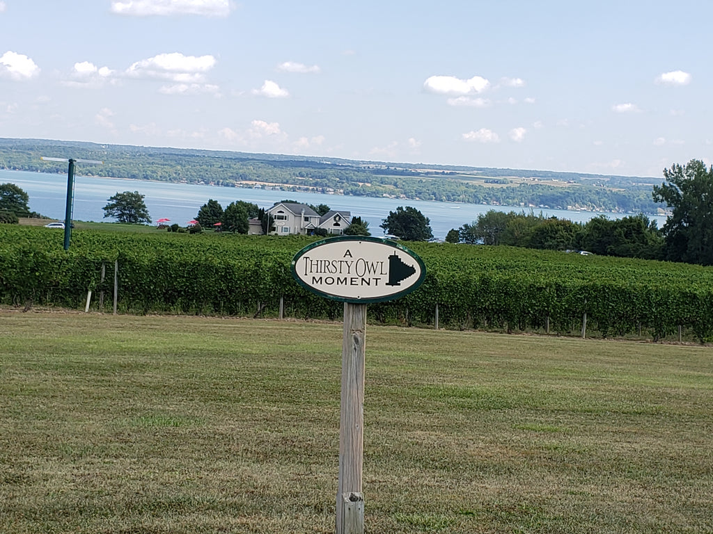 Thirsty Owl Winery in the Finger Lakes