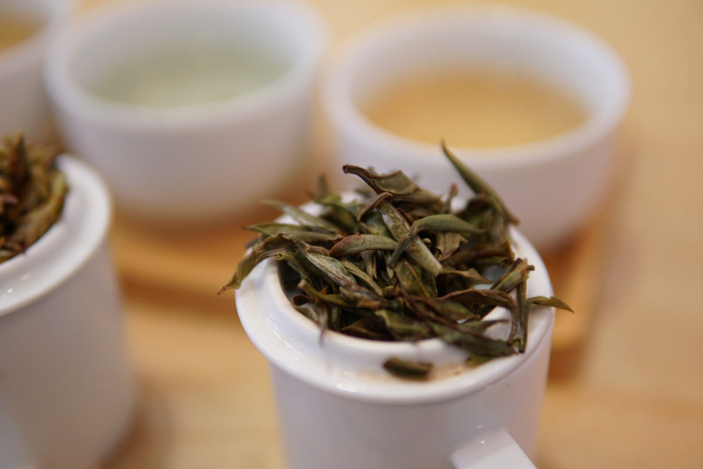 Himalayan White Tea - Jun Chiyabari Nepal