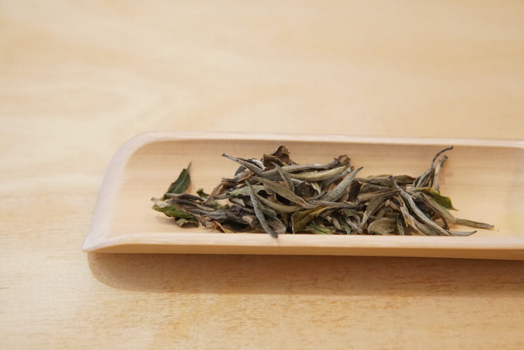 Himalayan White Tea, Jun Chiyabari Nepal