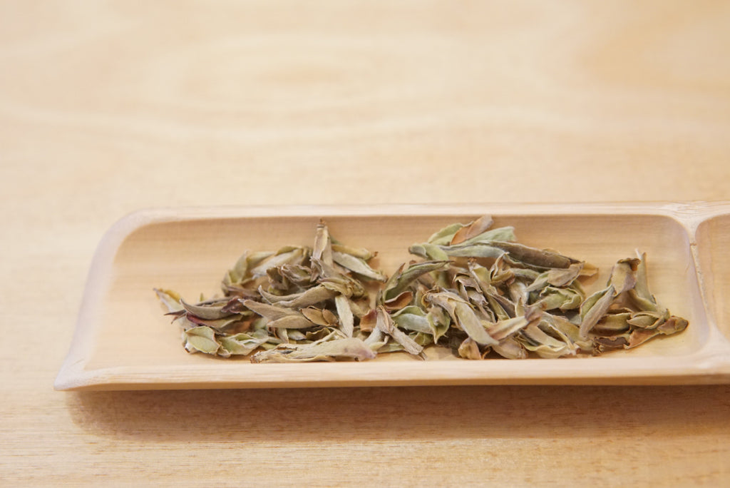Nan Mei White Tea. Yunnan, China