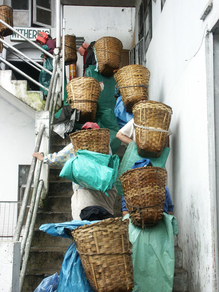 People carrying baskets up a staircase