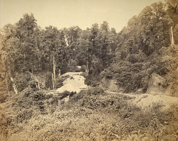 Road to Darjeeling. 1865.