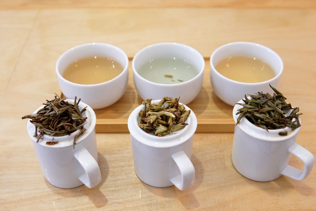 White Tea Flight. Leaf Tea Bar