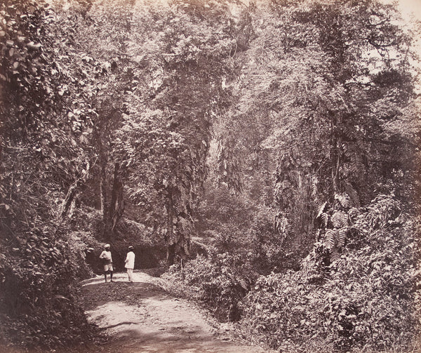 Tukvar Road. 1869. Image by Samuel E Bourne.