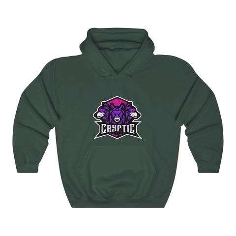 Cryptic Heavy Blend™ Hooded Sweatshirt