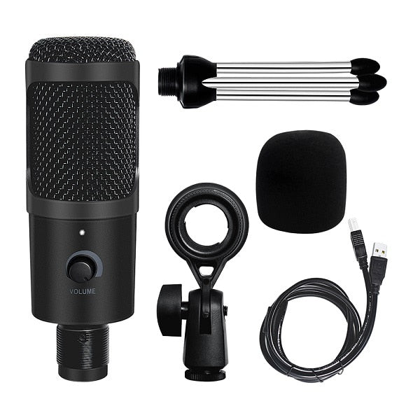 USB Microphone Condenser Recording Microphone D80 Mic with Stand