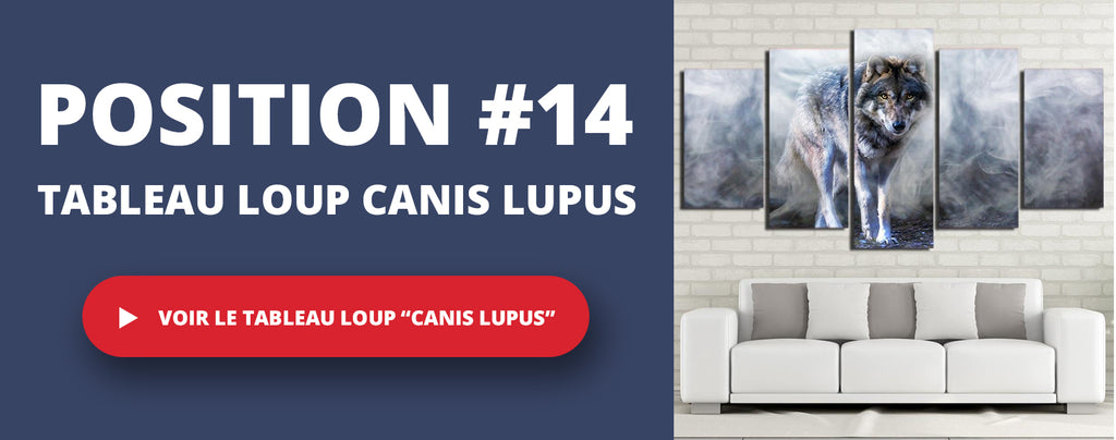 top-14-tableau-loup-canis-lupus