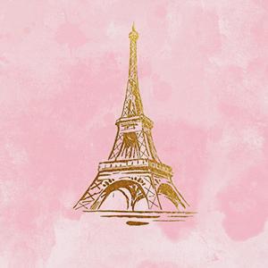 PINK PARIS  BACKDROP - Twins Print