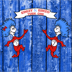 DR seuss 1 thing 2 thing  BACKDROP - Twins Print