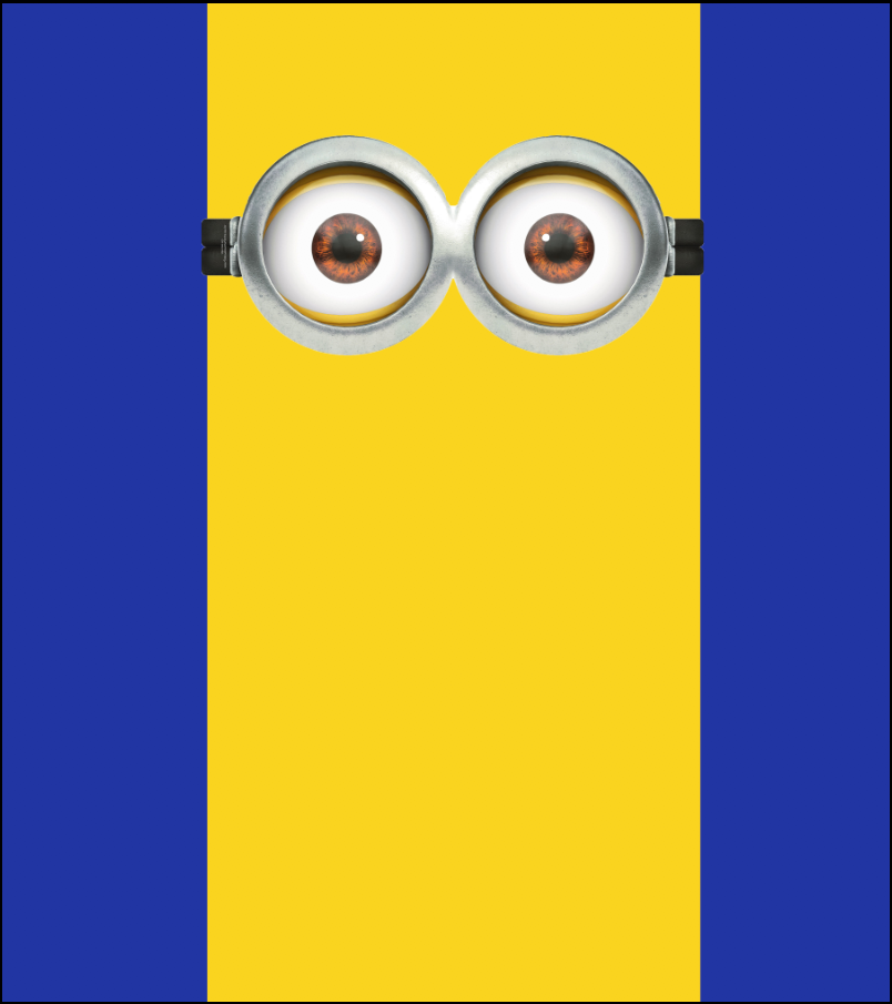 MINION'S PARTY BACKDROP - Twins Print