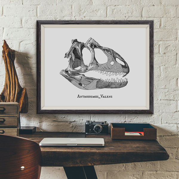 Antrodemus Valens 2 Vintage Dinosaur Illustration Art Print - VIVIDEDITIONS