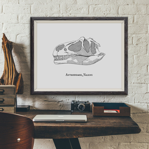 Antrodemus Valens Vintage Dinosaur Illustration Art Print - VIVIDEDITIONS