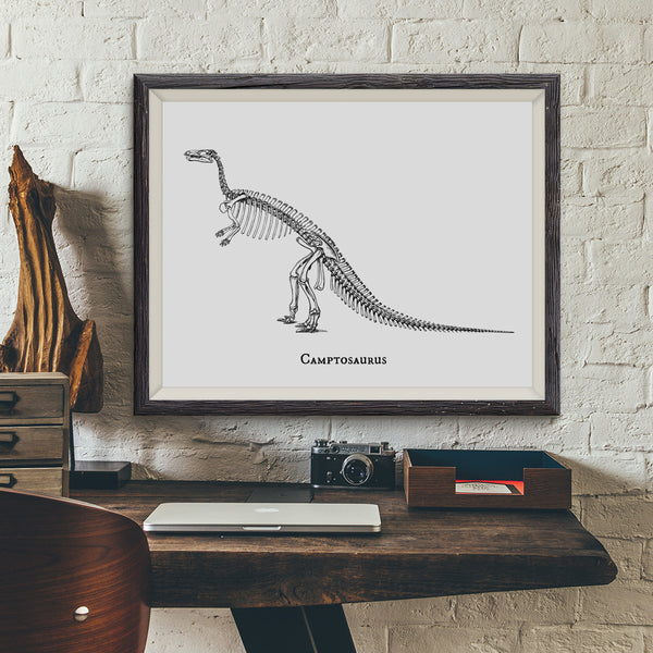 Camptosaurus Vintage Dinosaur Illustration Art Print - VIVIDEDITIONS
