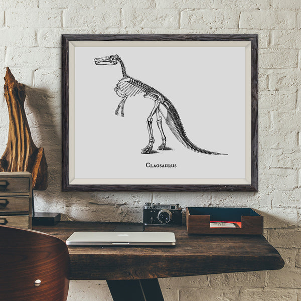 Claosaurus Vintage Dinosaur Illustration Art Print - VIVIDEDITIONS