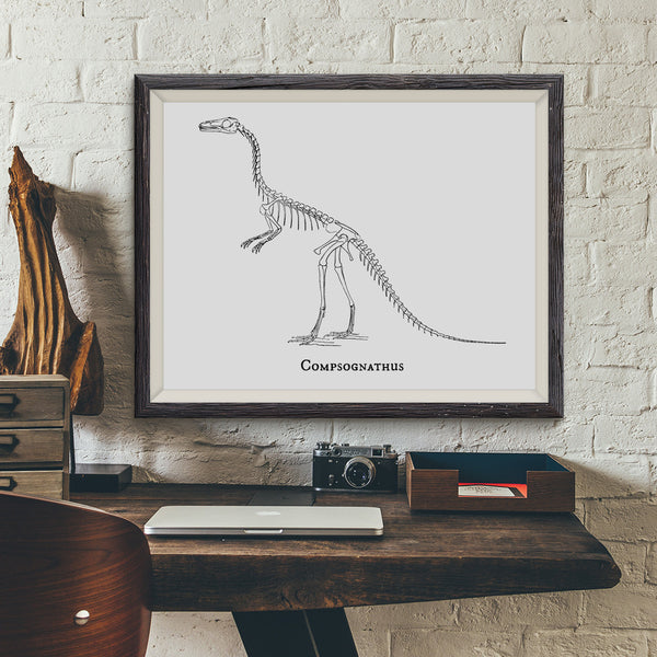 Compsognathus Vintage Dinosaur Illustration Art Print - VIVIDEDITIONS
