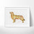 Golden Retriever Dog 2 Art Print - VIVIDEDITIONS