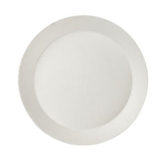 Single use Large Plate - strong and sturdy