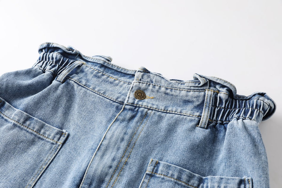 Irelyn Plus Size Highwaist Denim Shorts