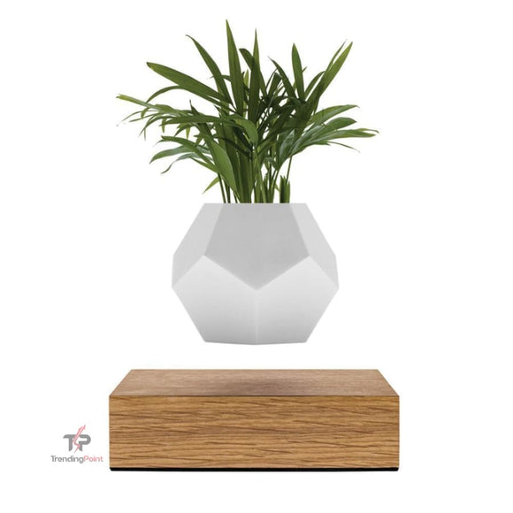 NEW Modern Levitating Plant - Home