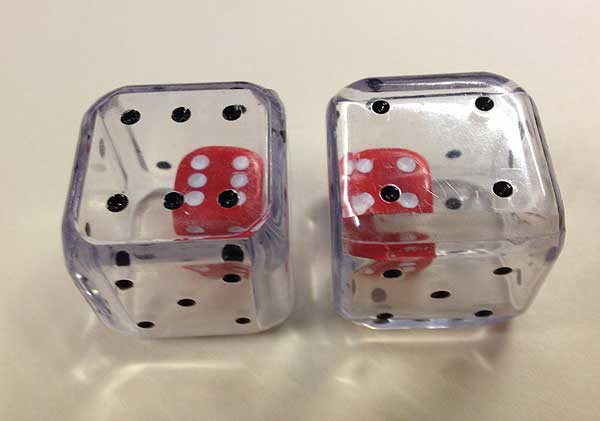 Large Double Dice