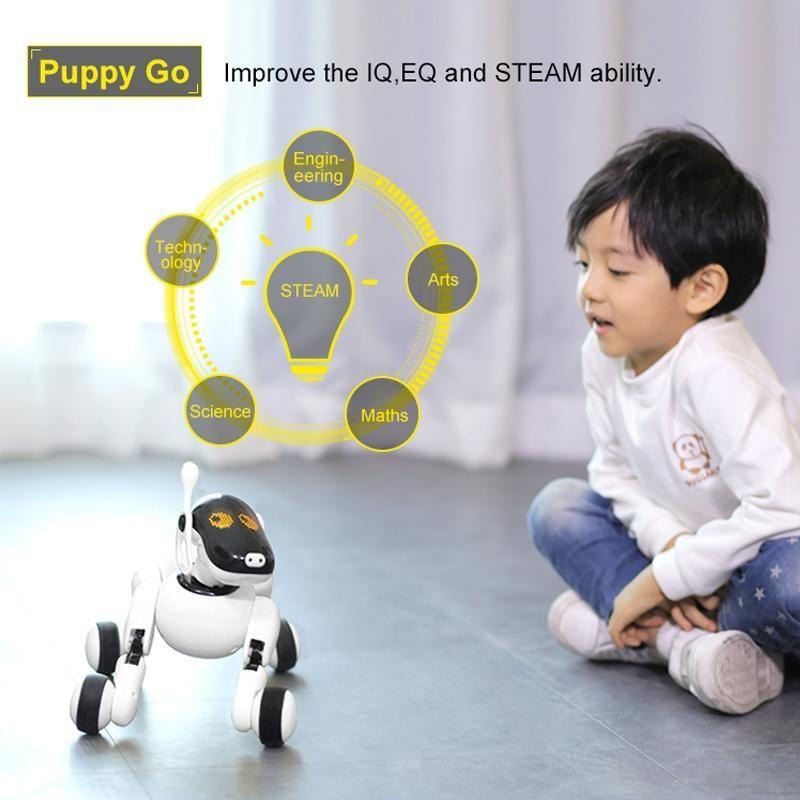 Puppy Go Smart Dog NAcloset