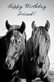 Happy Birthday friend ( black horses)