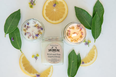 Wild and Free    Grapefruit- Mimosa candle
