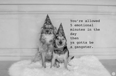 You're allow 30 emotional minutes in a day ... then ya gotta be a gangster ( dogs)