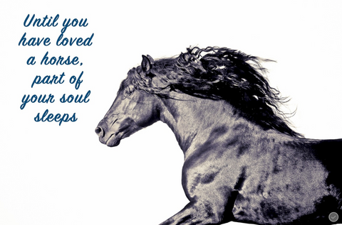 Until you have loved a horse, part of your soul sleeps