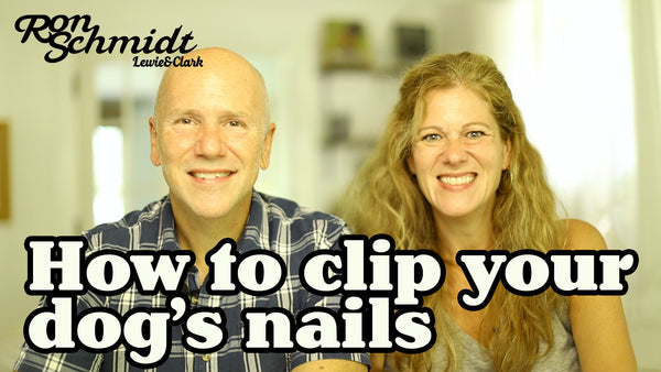 How To Clip Your (XL) Dog's Nails at Home!