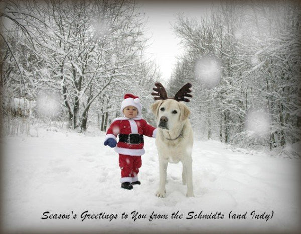 Little Santa and Lab with Reindeer ears by Ron Schmidt