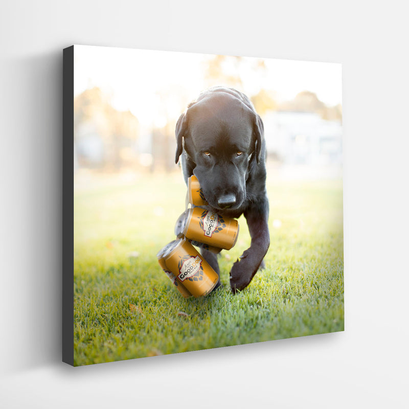 """BREWER"" Black Labrador Retriever Art"