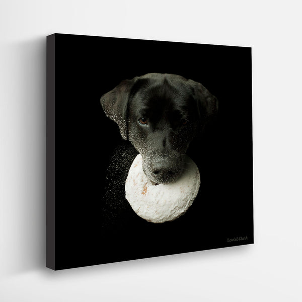 """HOMER"" Black Labrador Art"