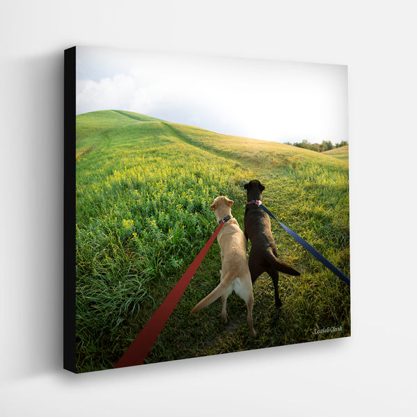 """LEWIE and CLARK - On Your Mark"" Labrador Retriever Art"