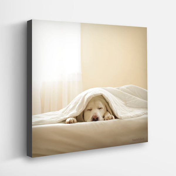 """ZEE"" Yellow Labrador Art"