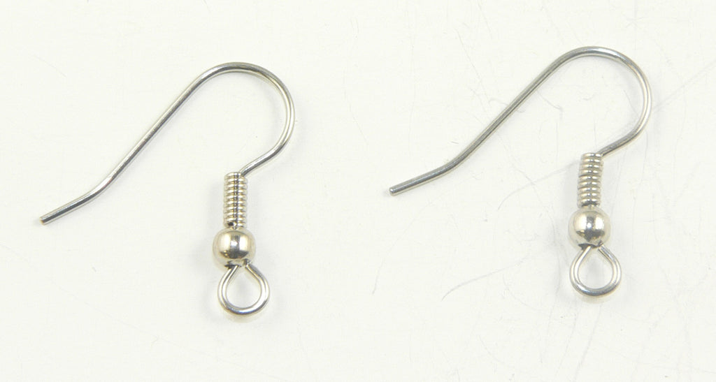 Surgical Steel Earwires (1 pair)