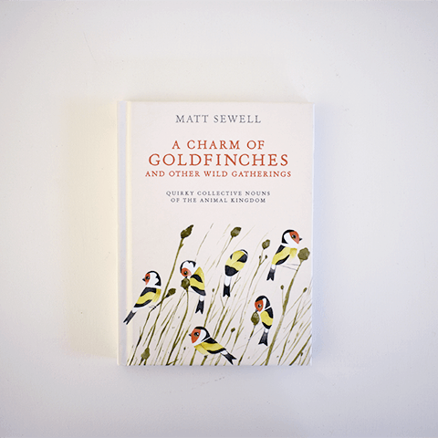 A Charm of Goldfinches Books Penguin Random House