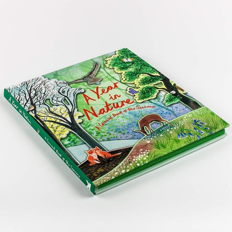 A Year In Nature: A Carousel Book of the Seasons Books The Wonder Cabinet