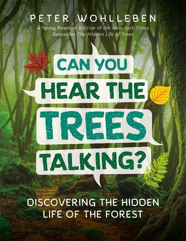 Can You Hear The Trees Talking? The Wonder Cabinet