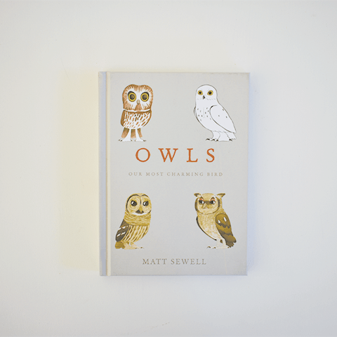Owls Books Penguin Random House