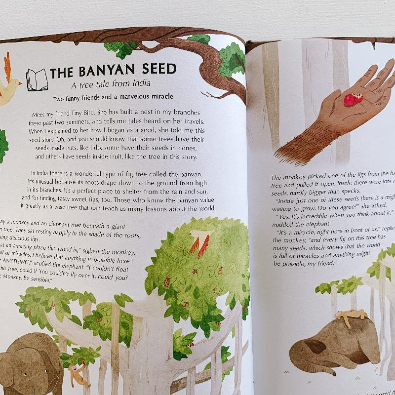 Secret Life of Trees Books The Wonder Cabinet