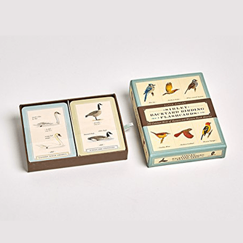Sibley Backyard Birding Flashcards Books Penguin Random House