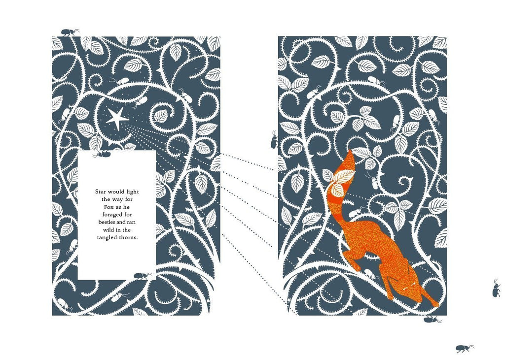 The Fox and the Star Books Penguin Random House