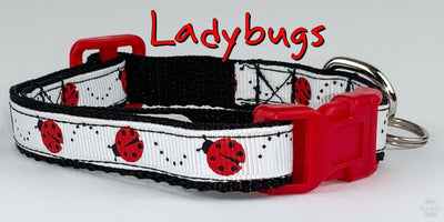 Ladybugs cat or small dog collar 1/2