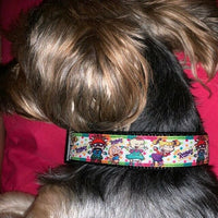 "Day Of The Dead dog collar handmade adjustable buckle collar 1""wide or leash - Furrypetbeds"