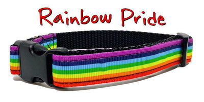 Rainbow Pride dog collar handmade adjustable buckle collar 5/8