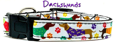 Dachshund dog collar handmade adjustable buckle collar 5/8